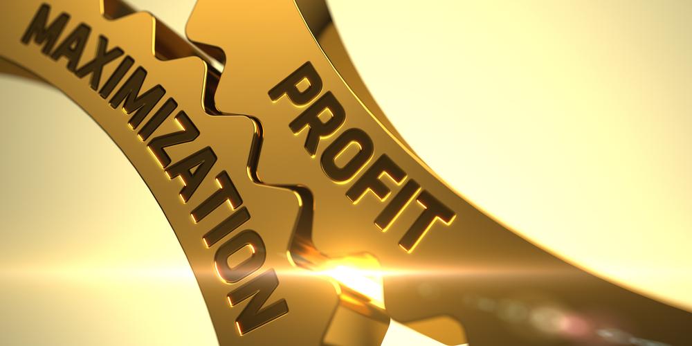 maxime conversion = maximize profit ?